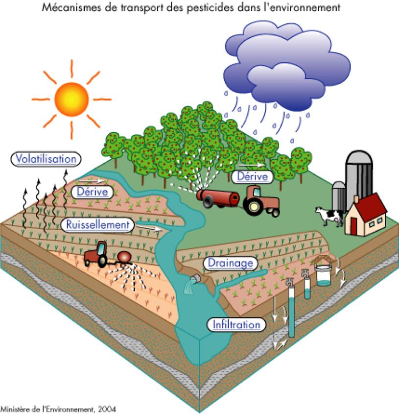 Transport des pesticides dans l'environnement