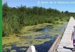 Sortie à la RNF du lac Saint-François