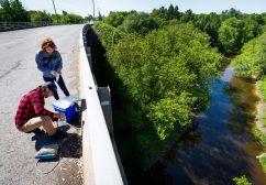 Pesticides : la rivière aux horreurs